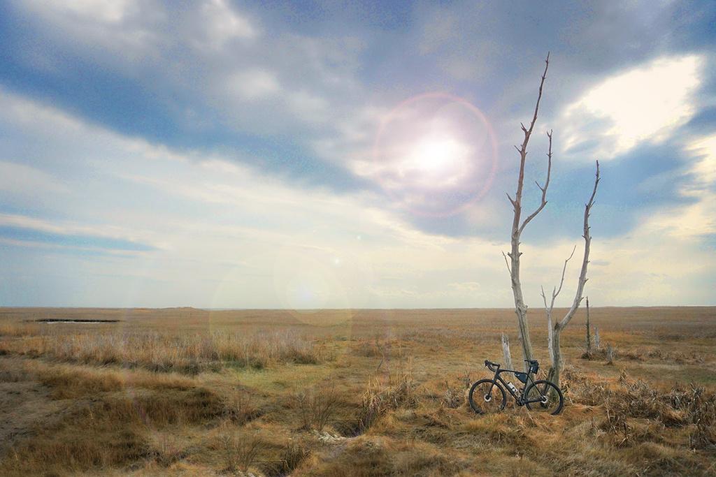 Post Your Gravel Bike Pictures-dsc08878.jpg