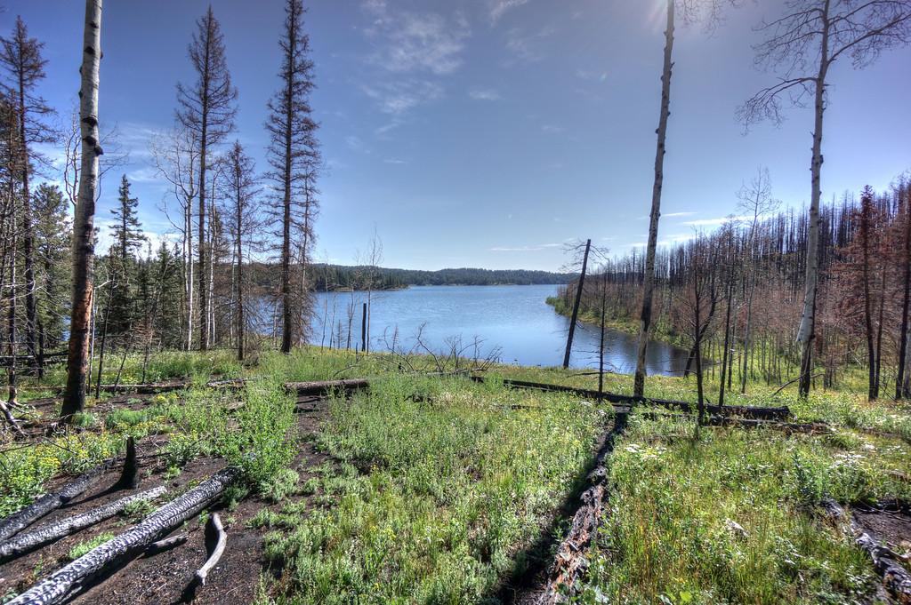 Rampart Range Lake Trail, Woodland Park, Colorado-dsc08903_4_5_tonemapped-xl.jpg