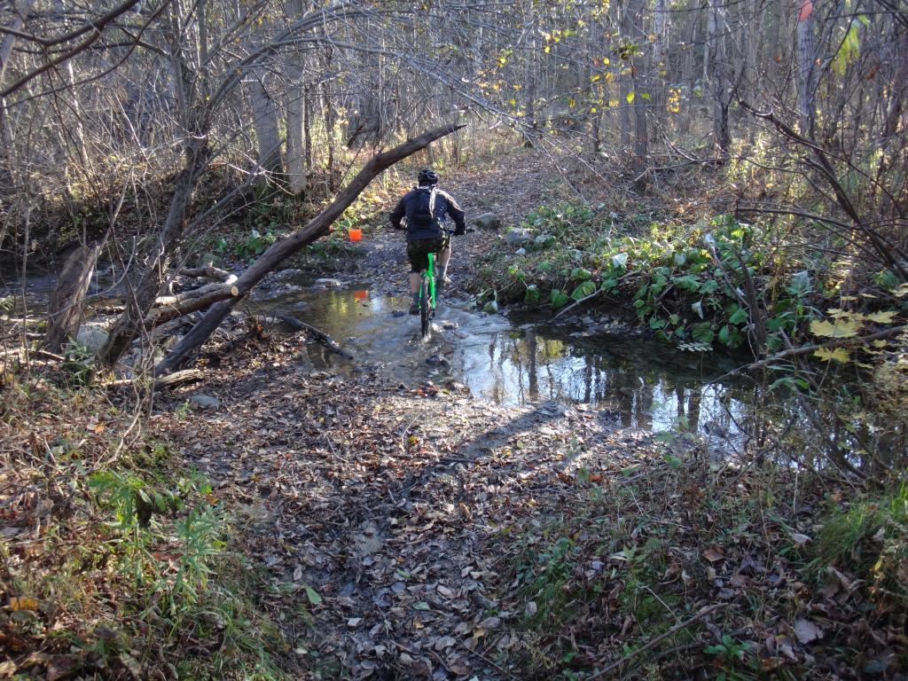 Local Trail Rides-dsc09129_zpsc9e900a1.jpg
