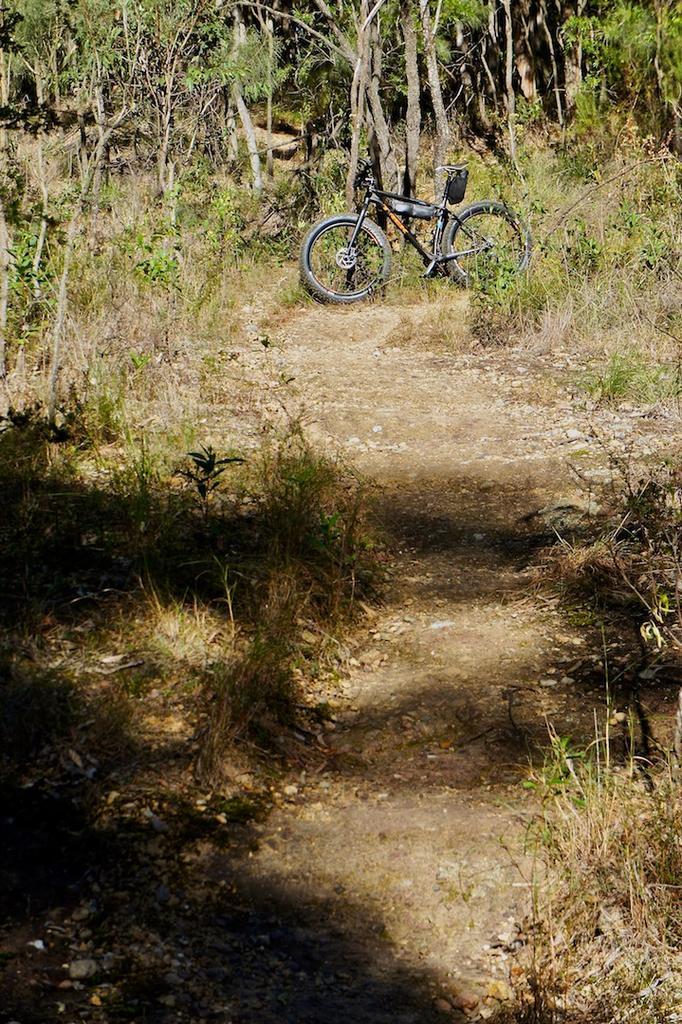 Fat Biking and health-dsc09141.jpg