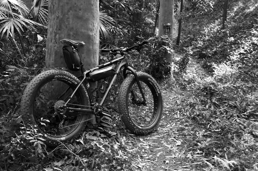 Fat Biking and health-dsc09144.jpg