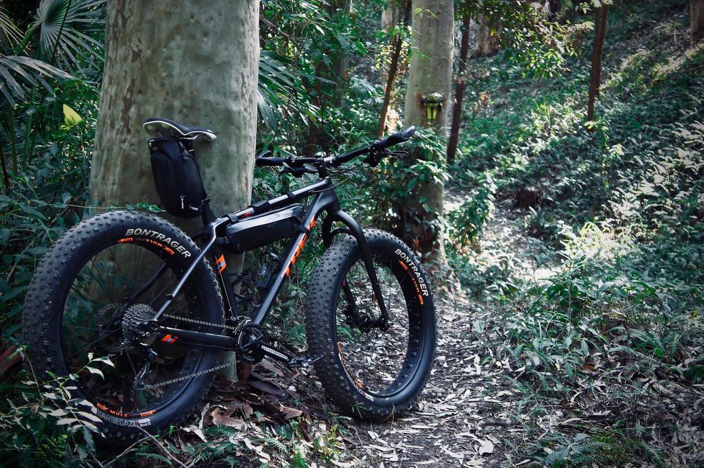 Daily fatbike pic thread-dsc09146.jpg