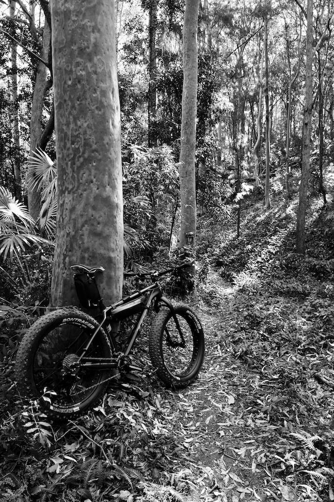 Fat Biking and health-dsc09148.jpg
