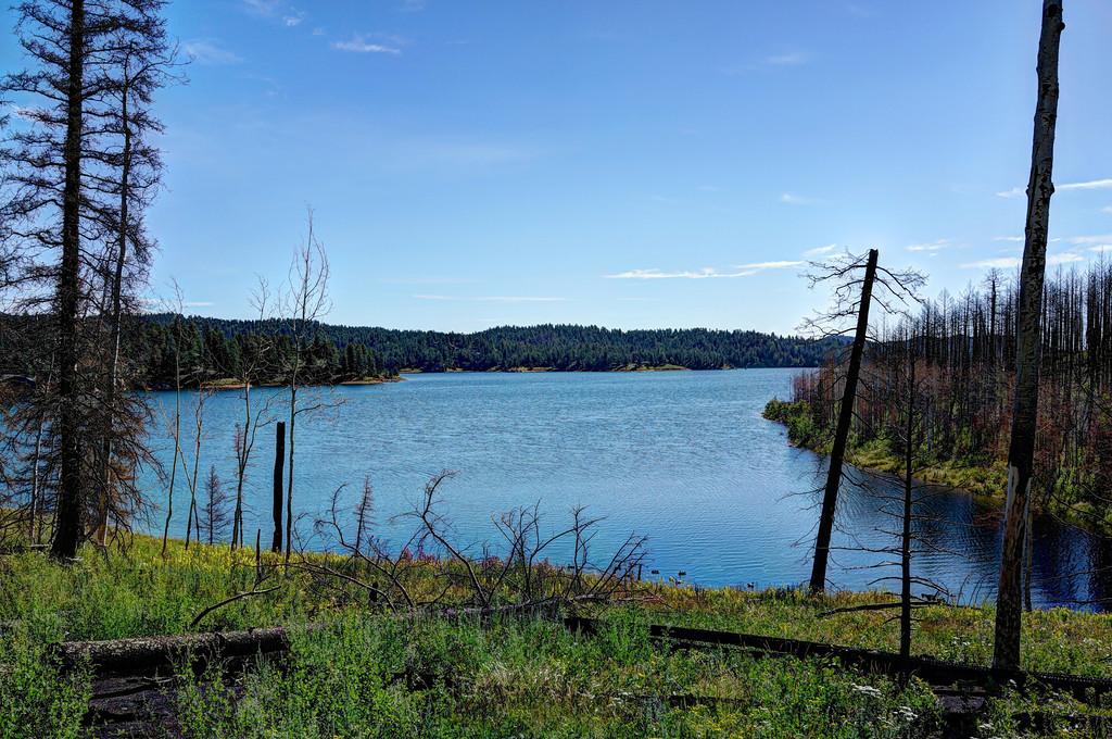 Rampart Range Lake Trail, Woodland Park, Colorado-dsc09201_2_3_fused-xl.jpg