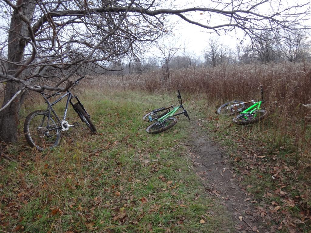 Local Trail Rides-dsc09204_zpsffdd5d86.jpg