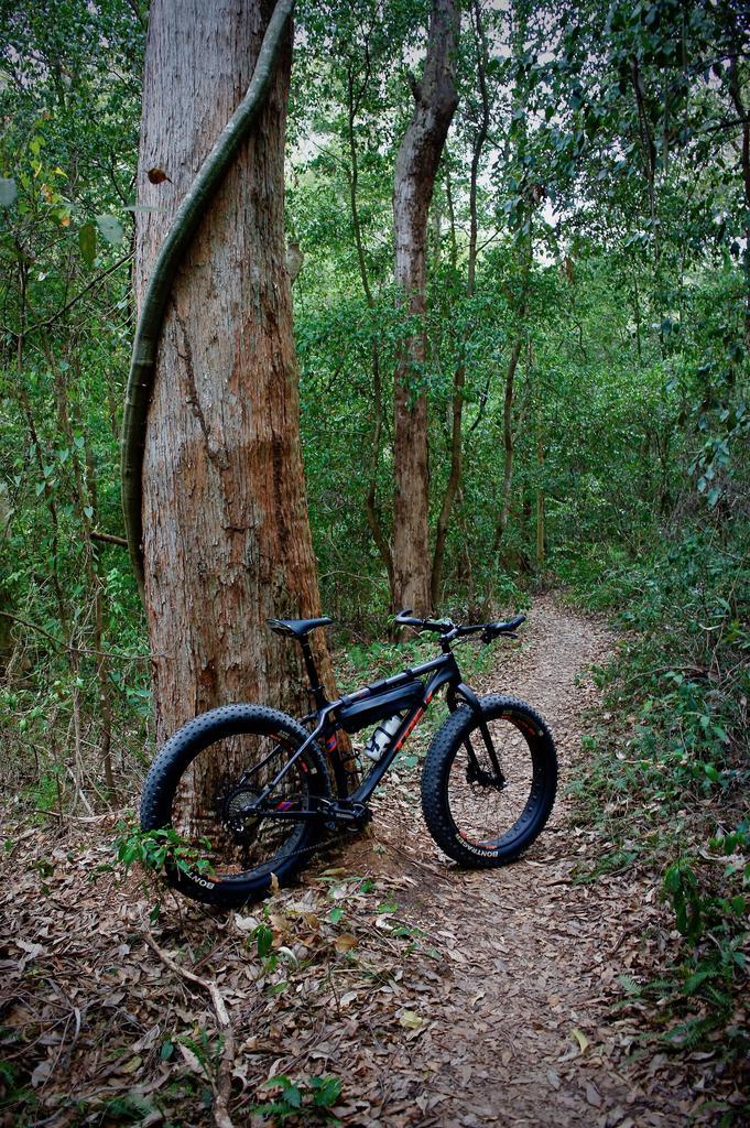 Fat Biking and health-dsc09307.jpg