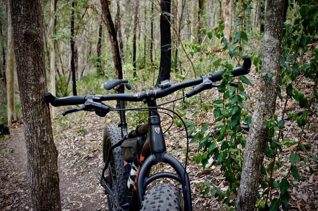 Fat Biking and health-dsc09318.jpg