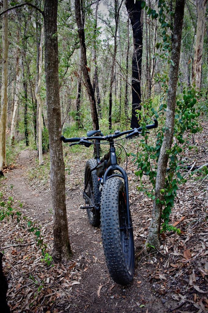 Fat Biking and health-dsc09321.jpg