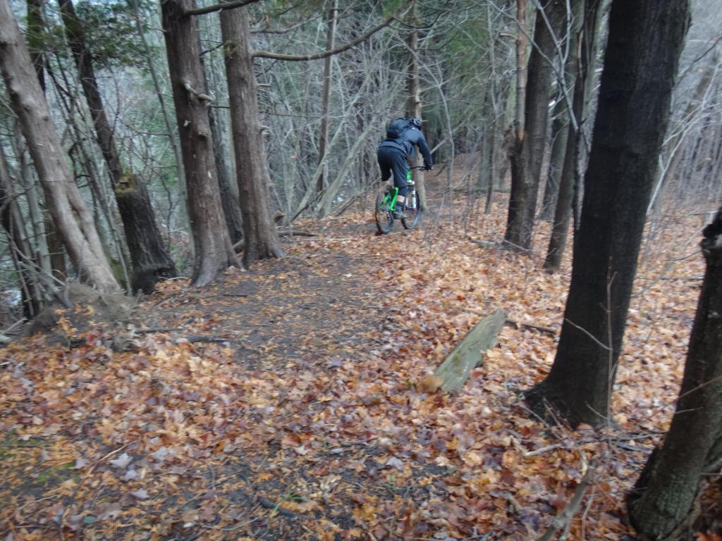 Local Trail Rides-dsc09322_zps0c9c65e3.jpg