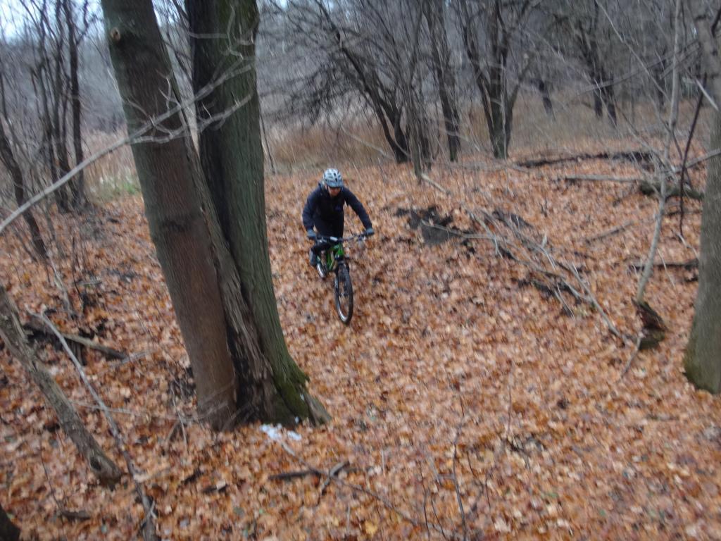 Local Trail Rides-dsc09325_zpsb354d30a.jpg