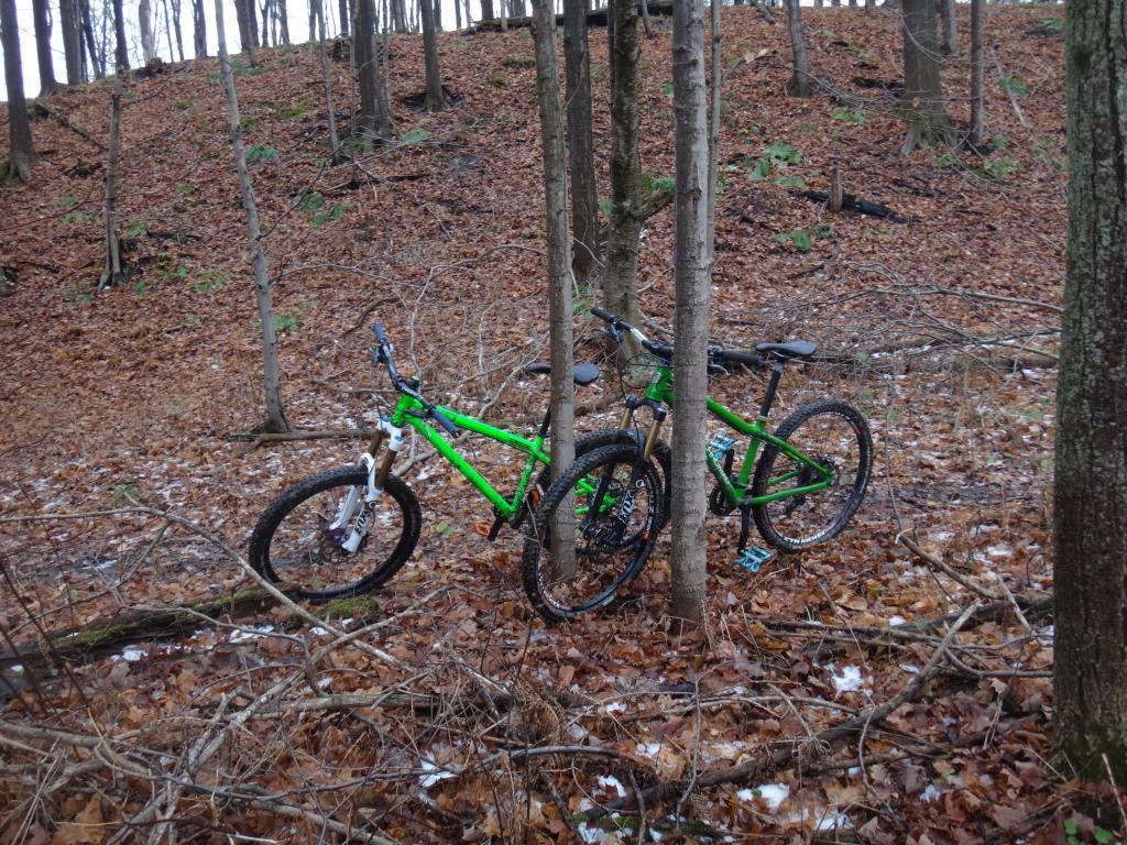 Local Trail Rides-dsc09336_zps29d6e4d0.jpg