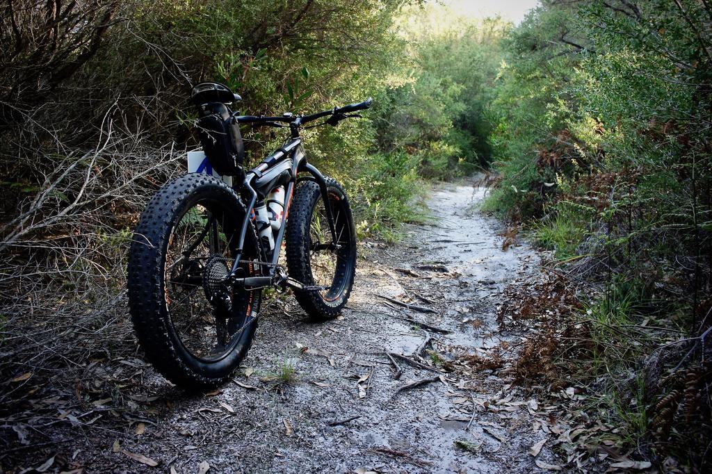 Fat Biking and health-dsc09421.jpg
