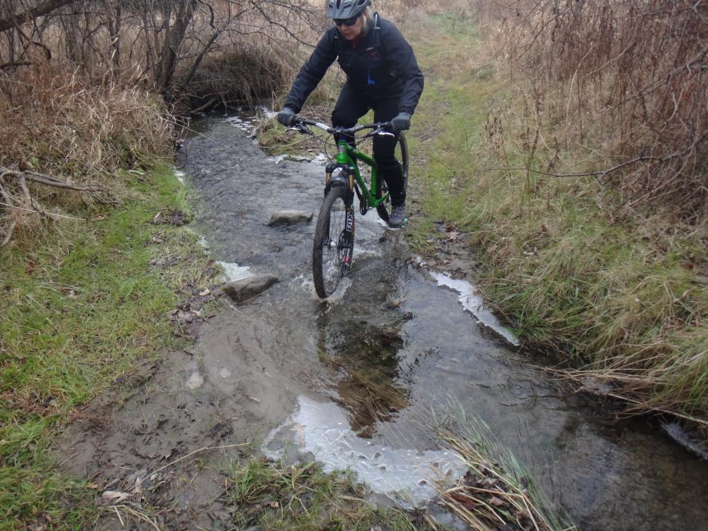 Local Trail Rides-dsc09437_zpse6aba8be.jpg