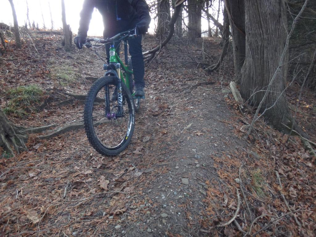 Local Trail Rides-dsc09653_zps69e96506.jpg