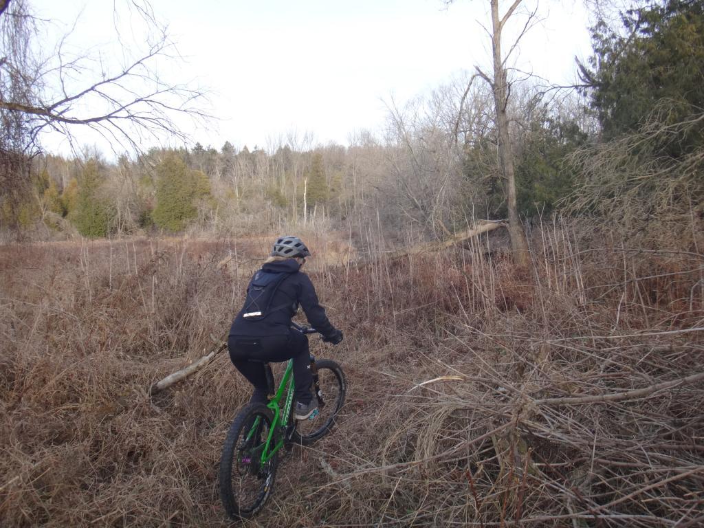 Local Trail Rides-dsc09656_zps76736a5b.jpg