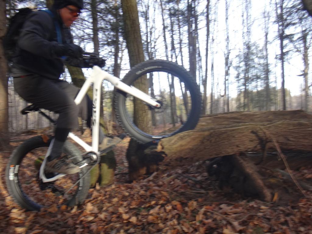 Local Trail Rides-dsc09674_zps6ccadfab.jpg