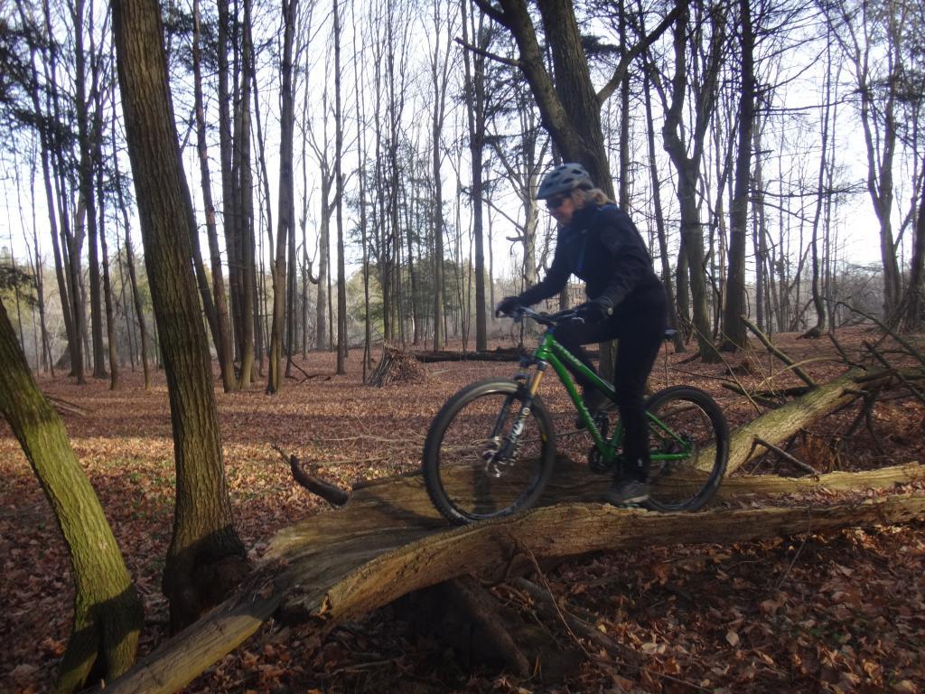 Local Trail Rides-dsc09679_zps36c78af7.jpg