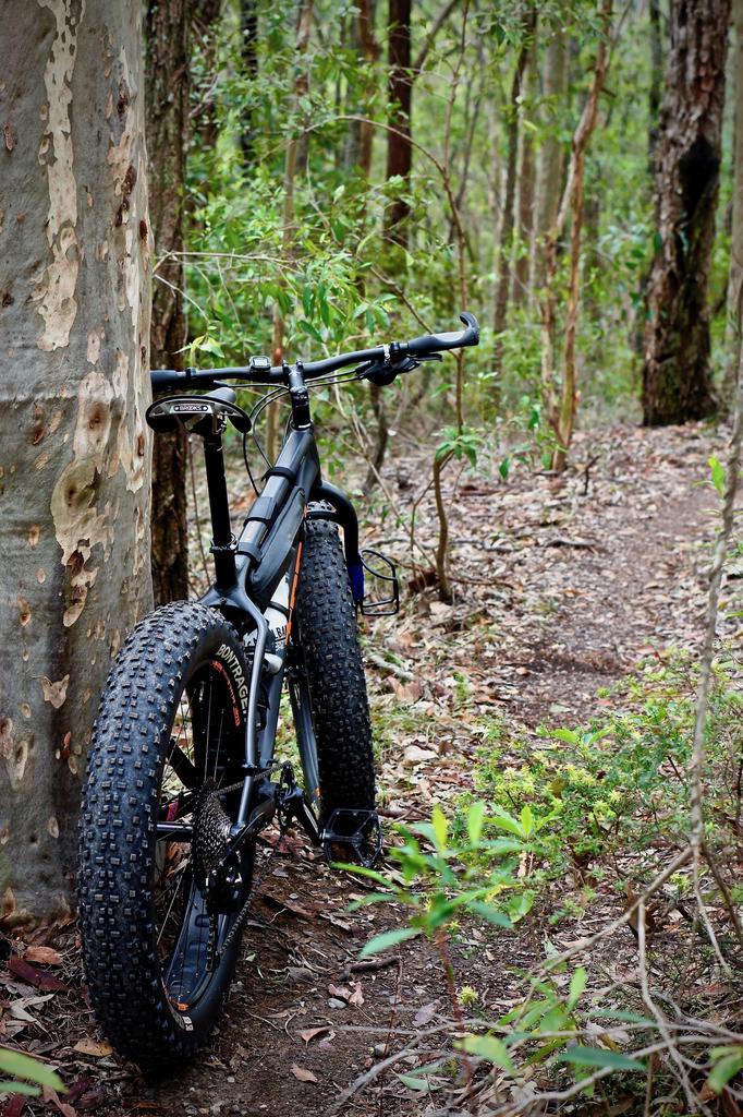 Fat Biking and health-dsc09682.jpg