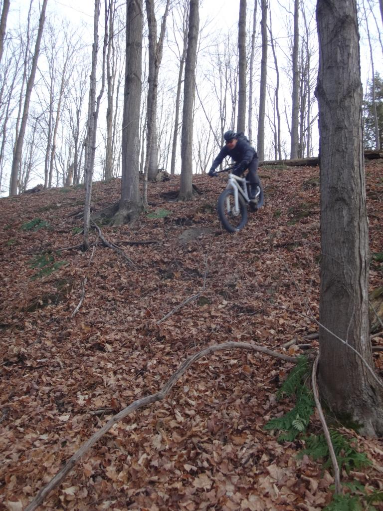 Local Trail Rides-dsc09693_zps89396136.jpg