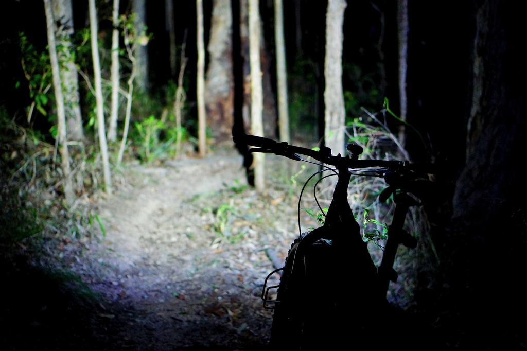 Fat Biking and health-dsc09763.jpg