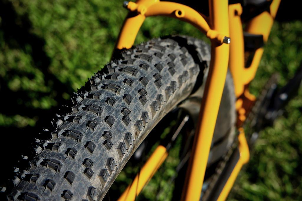 Fat Biking and health-dsc09809.jpg