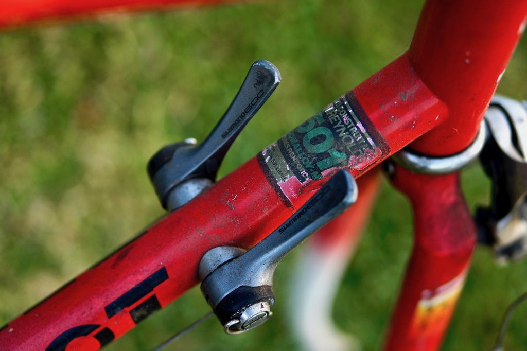 Fat Biking and health-dsc09817.jpg