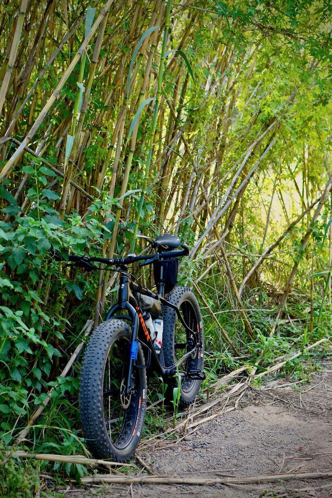 Fat Biking and health-dsc09832.jpg