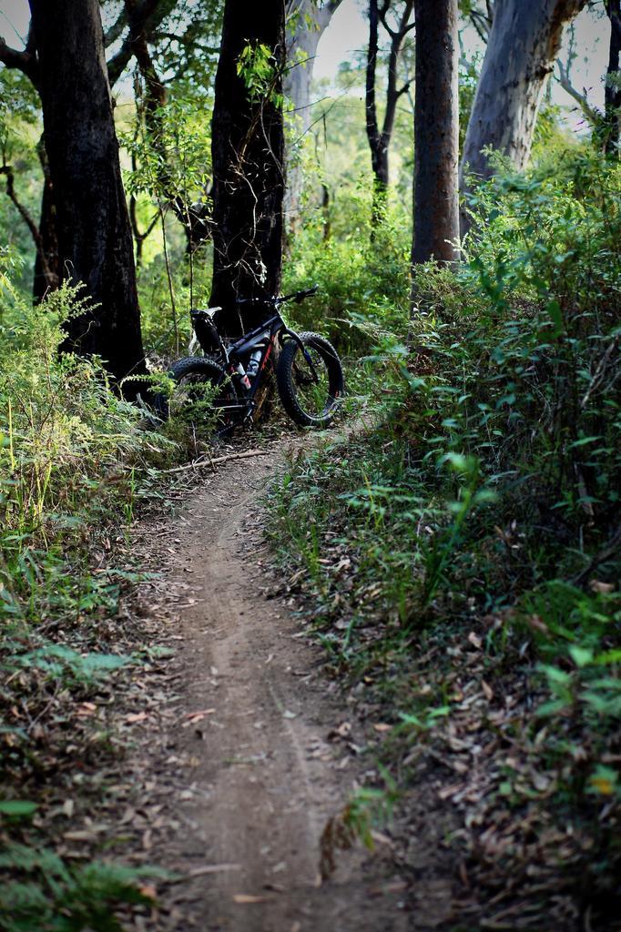 Fat Biking and health-dsc09841.jpg