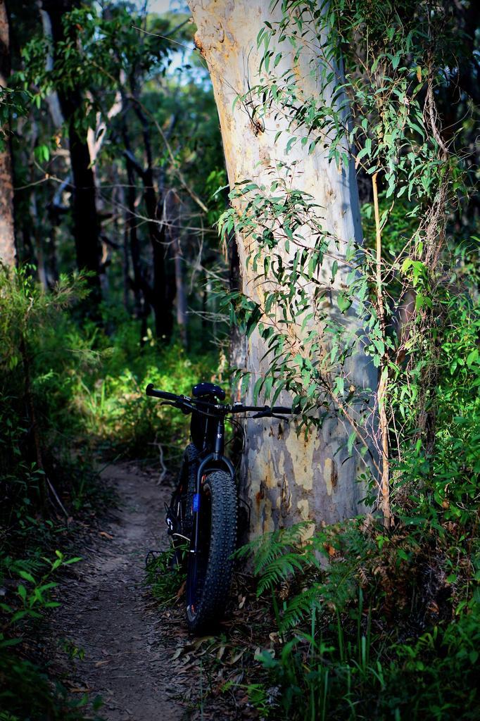 Fat Biking and health-dsc09842.jpg