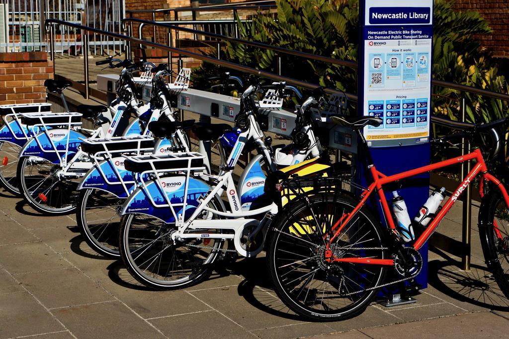 Fat Biking and health-dsc09876.jpg