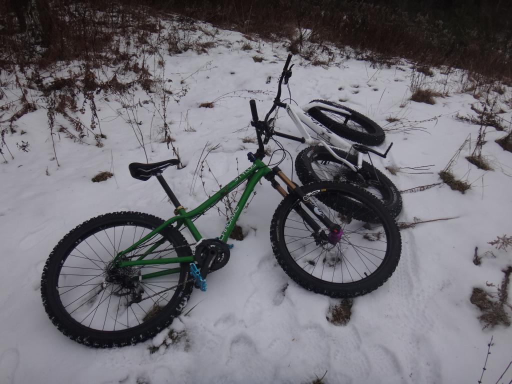 Local Trail Rides-dsc09993_zps1ec74f9d.jpg
