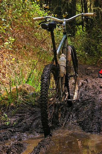 650B Picture Thread-dsc_0001.jpg