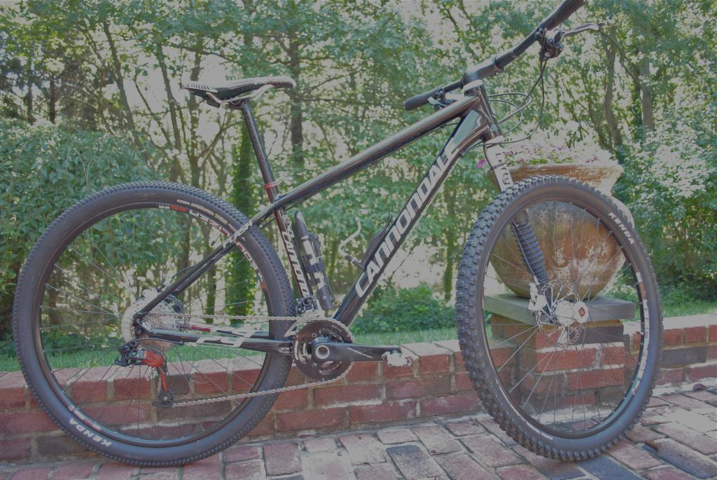Post a pic of your Cannondale  29er-dsc_0003.jpg