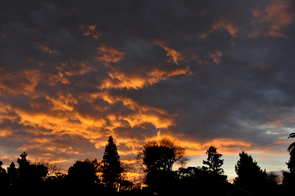 Photo Assignment: Sunset-dsc_0005.jpg