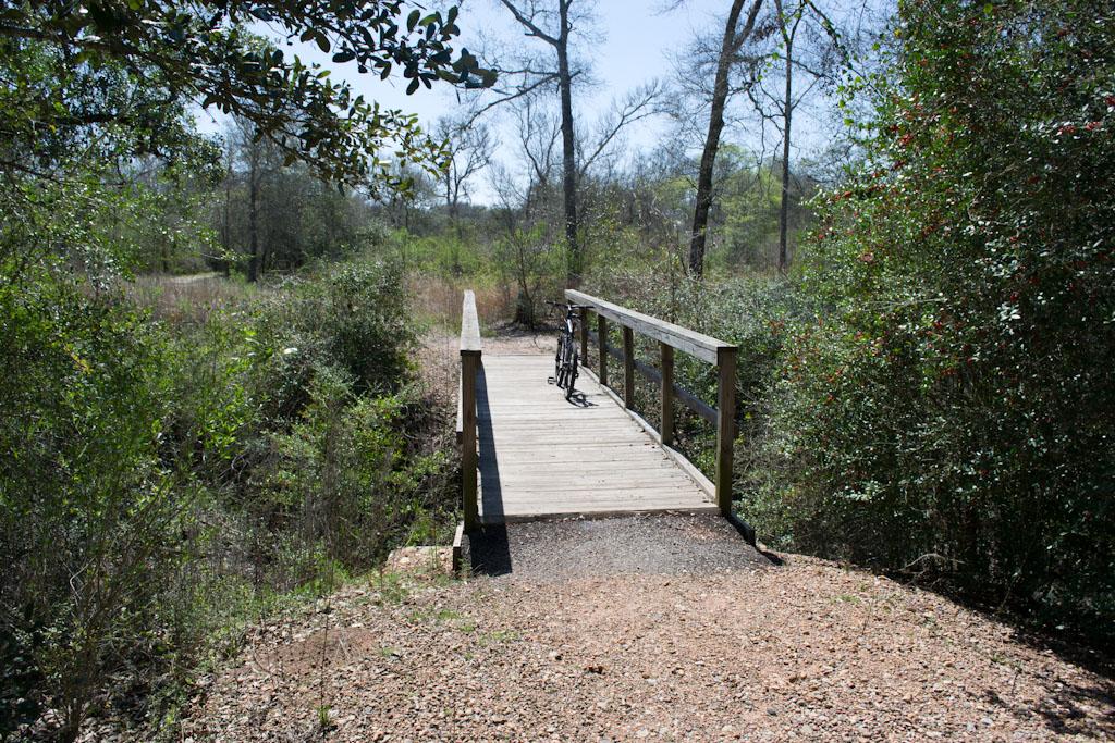 Lake Texana / Brekenridge Parks (pics)-dsc_0023.jpg