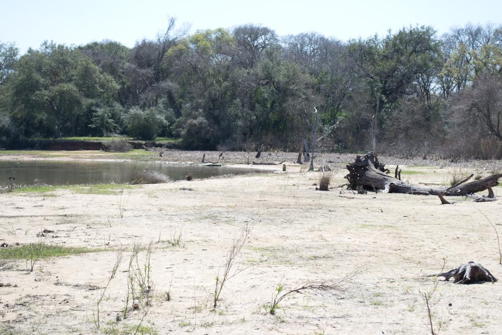 Lake Texana / Brekenridge Parks (pics)-dsc_0035.jpg