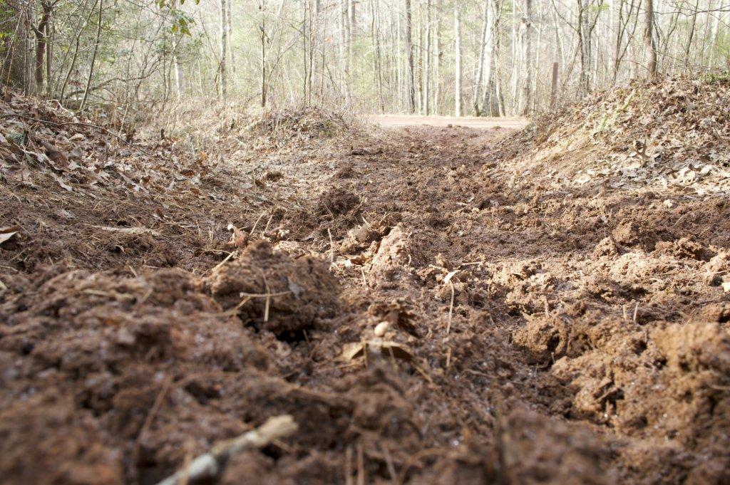 Pisgah Trail Conditions-dsc_0043.jpg