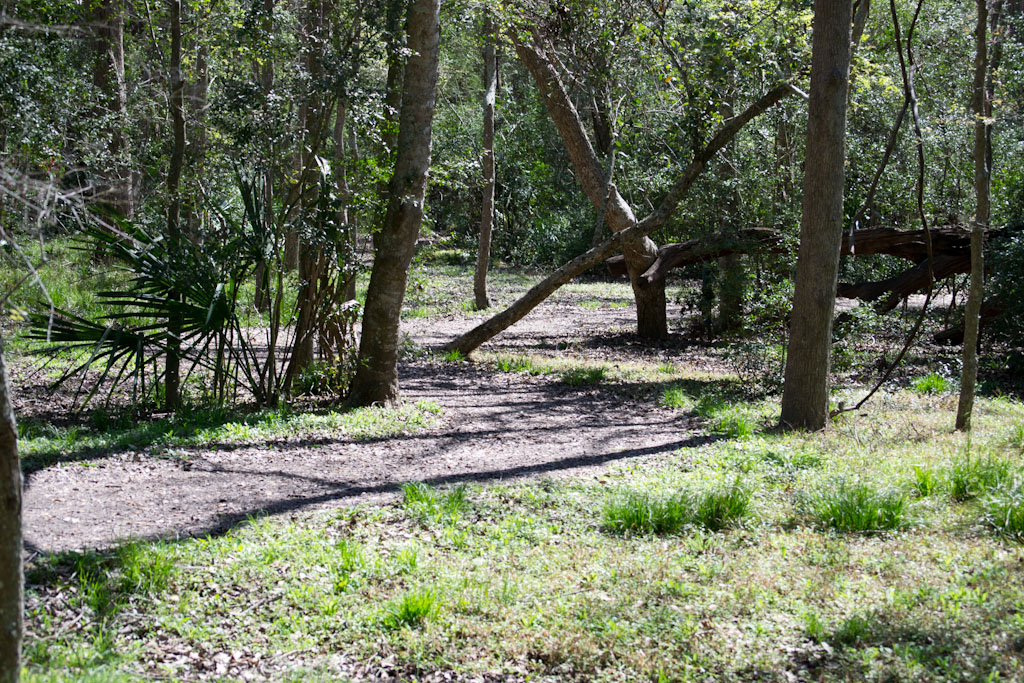 Lake Texana / Brekenridge Parks (pics)-dsc_0045.jpg