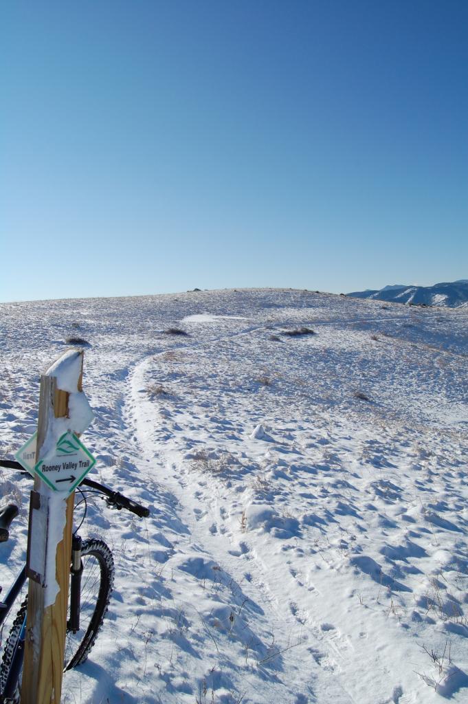 How much Snow ?-dsc_0100.jpg