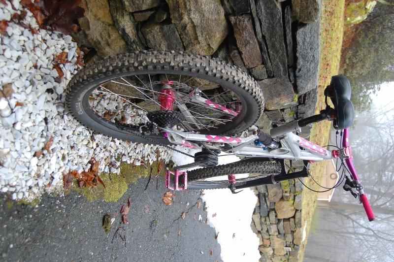 All Our Bikes-dsc_0203-800x532-.jpg