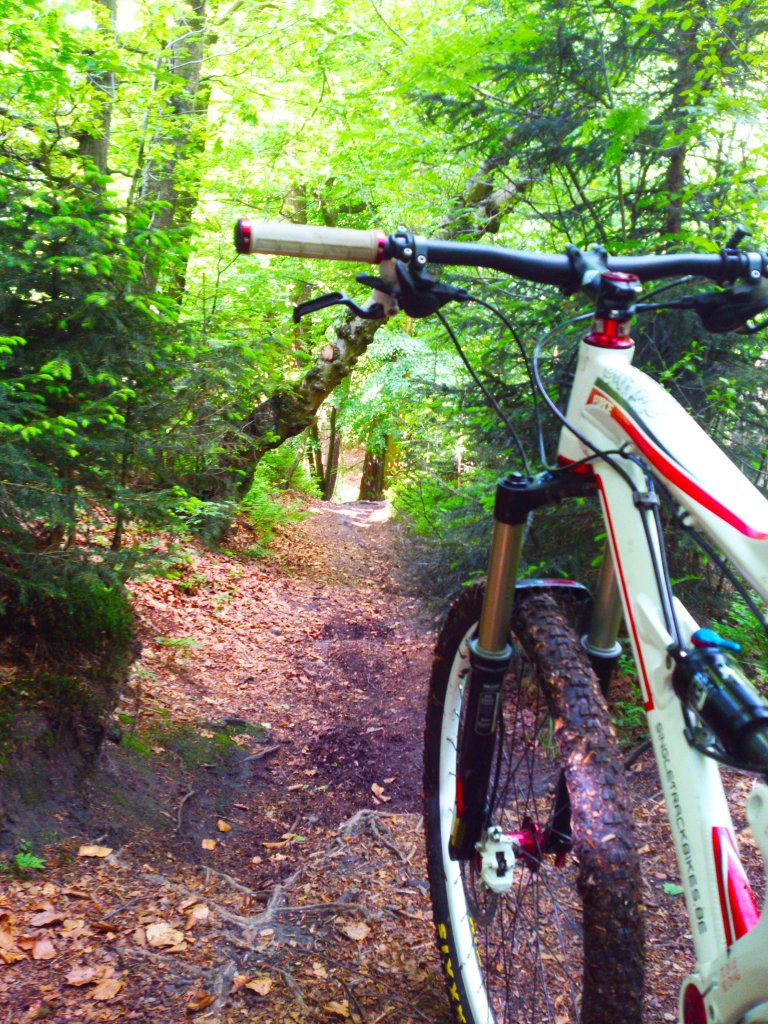 Your Best MTB Pics with the iPhone-dsc_0578.jpg