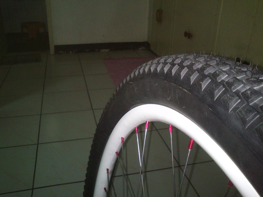 New Vee Rubber 650B Tires!!! lots of pics-dsc_0590_res.jpg