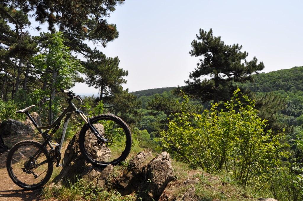 Titus Bike Pr0n-dsc_0625.jpg