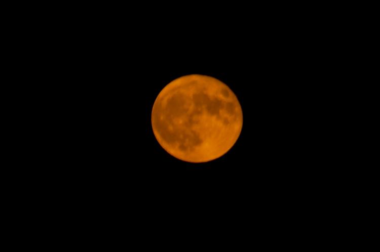 Full moon 8/15/2019-dsc_0940.jpg