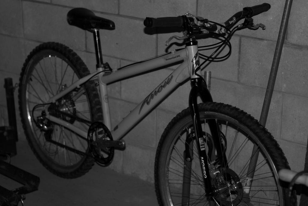 What are some dj bikes that would make decent xc bikes?-dsc_2737c.jpg