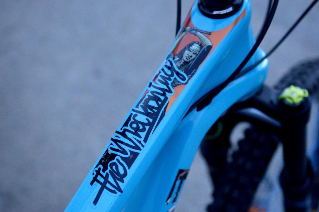 Evil Bikes: The Wreckoning - User Review-dsc_2811.jpg