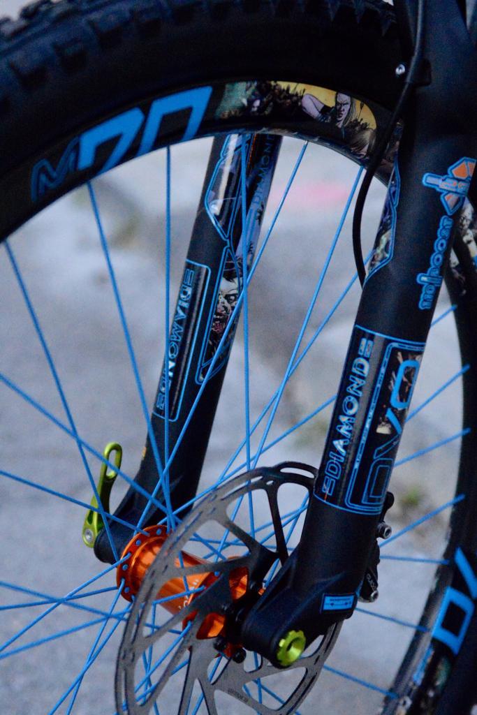 Evil Bikes: The Wreckoning - User Review-dsc_2819.jpg