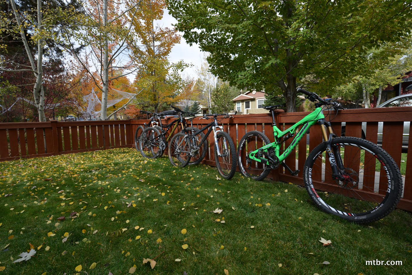 Bikes in the Yard