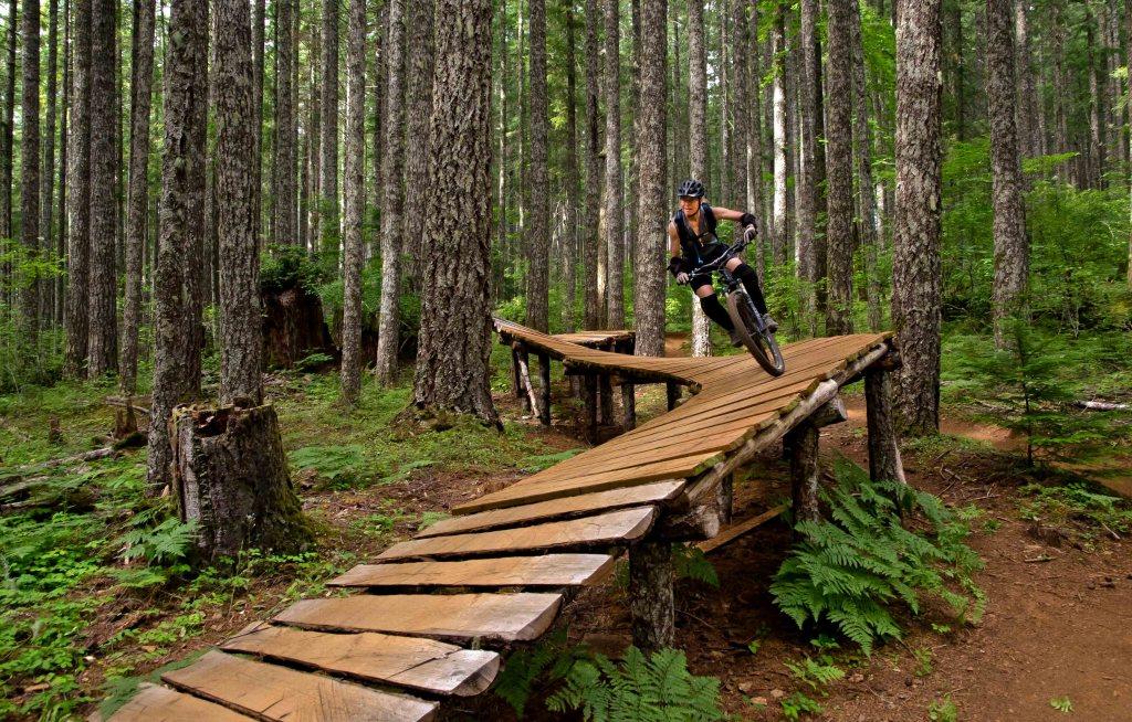 Bridge to Cross Wetlands-dsc_4269-edit.jpg