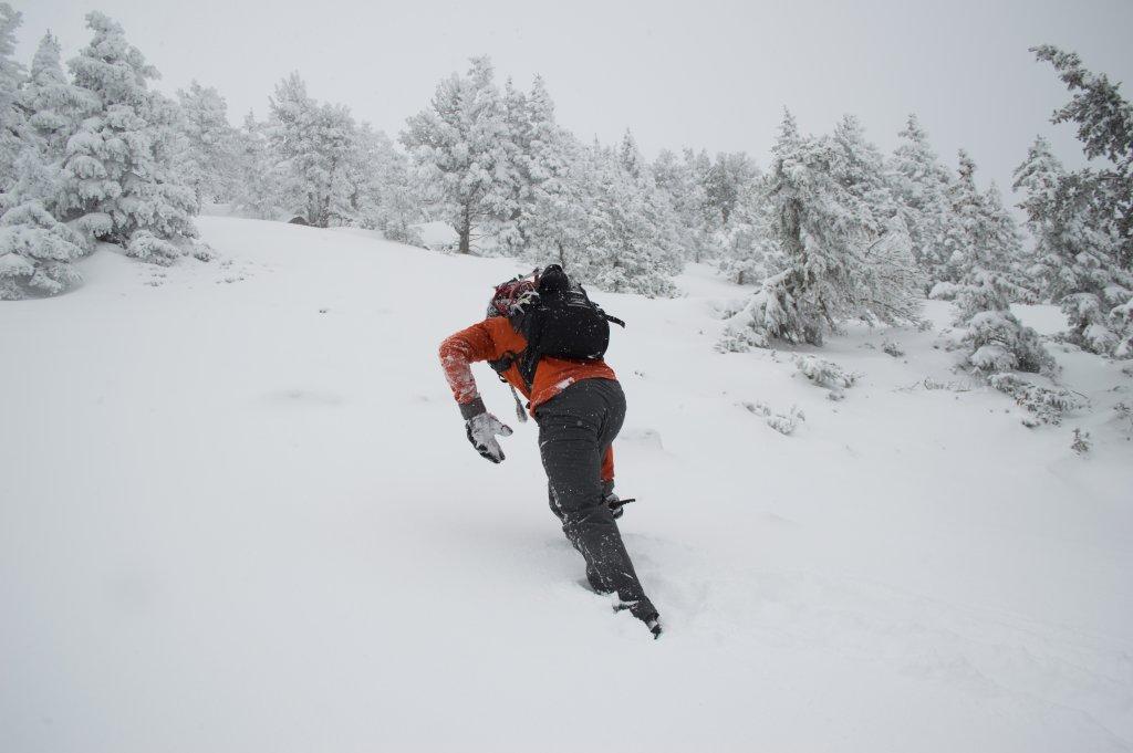 2013/2014 Snow Stoke Thread-dsc_4594.jpg